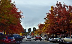 Wall Street... (thor_mark ) Tags: street trees oregon unitedstates bend streetlights cities urbanexploration day4 bendor leafcolors project365 colorefexpro carsdriving cloudsabove carsparked nikond800