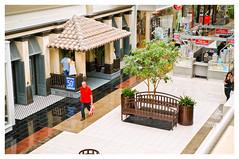 The Artsy Feeling of the Walden Galleria Mall (catAsmith) Tags: retail mall shopping colorful artsy walden stores galleria daytrip boutiques cheektowaga cheektowaganewyork waldengalleriamall sonynex