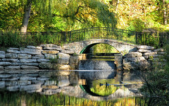 [2007] Stone Bridge (Diego3336) Tags: park bridge autumn trees urban toronto ontario canada reflection fall nature water stone creek reflections pond rocks highpark ducks sunny clear springcreek