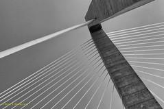 Ravenel Bridge Tower (r_bowley) Tags: bridge blackandwhite bw sc southcarolina charleston cooperriverbridge ravenelbridge cablestaybridge nikond90