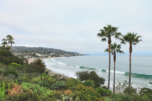 color green of Laguna beach