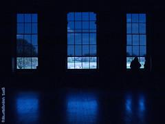 B&B - Blue and Black (Paulo Silveirinha) Tags: uk blue windows london palace ken