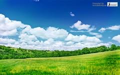 beautiful nature wide