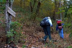 Appalachian Trail Work (WabbyTwaxx) Tags: mountain ferry pennsylvania pa trail appalachian shelter peters clarks privy duncannon