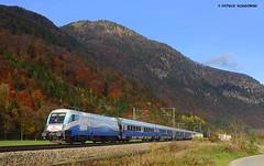 1116 251 ÖBB / Railjet Ski Austria (vsoe) Tags: railroad mountain train germany bayern deutschland herbst engine siemens eisenbahn railway berge taurus bahn öbb autumm oberaudorf lok züge 1116 railjet