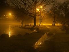 100_6926st Fulton Park night fog (shutterbroke) Tags: park light fog night lights pond kodak side low north ct fulton waterbury easyshare p850 shutterbroke