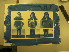 Cyanotype Final Piece (emiliesaurus) Tags: triptych cyanotype addeadesokan