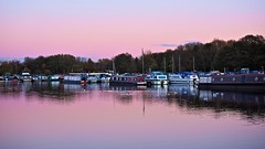 In the Pink..... (klythawk) Tags: nottingham pink blue autumn trees red seagulls white black green nature clouds marina reflections boats olympus westlake pinksky omd em1 1240mm colwickpark klythawk
