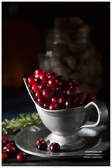 Holiday Cranberries (Cristina A-Moore) Tags: red fruit holidays dish cranberries pewter foodphotography teeniecakes teeniecakescom cristinaamoorephotography