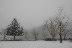 First snow in school (purunuri) Tags: school snow playground elementary pohang     jukjang