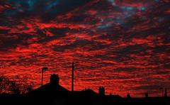 Goodbye Autumn (Marcus T Ward) Tags: november autumn sun set last day