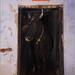 cow-shrine, varanasi