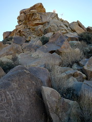 Petroglyphs in Coyote Hole (The Cabin On The Road) Tags: joshuatree