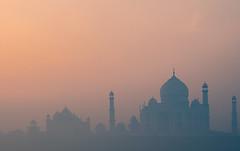 Taj Mahal from across the yamuna (Yet Another Guy With A Camera) Tags: india up taj tajmahal agra uttarpradesh flickrscreensaver mehtab mehtabbagh tajmahalacrossyamuna flickrscr