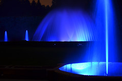 Ftn Show2.jpg (CapeCawder) Tags: nightphotography waterfountain longwoodgardens nikonshooters nikond5100