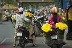When the Tet coming #3 (ak_phuong (Tran Minh Phuong)) Tags: new flower art home beautiful yellow festival last for town nice fantastic vietnamese photographer very ben sale year picture daily best phuong most when beat win tet coming capture winer sales ever tre cheap minh province biggest tran activities motobike yearly lunner akphuong