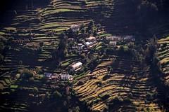Uttarakhand - Munsiyari (CortoMaltese_1999) Tags: india asia asien himalaya indien himalayas northindia kumaon uttarakhand munsiyari pithoragarh nordindien