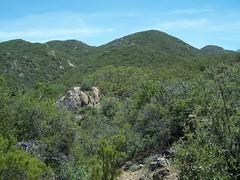 Hills below Iron Spring Mtn.