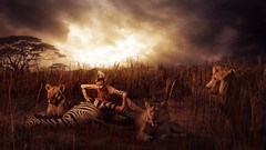 Serengeti (PHLEARN) Tags: red chicago green yellow composite training photoshop photography photo video illinois education imac adobephotoshop aaron pic images adobe download learning pro tablet wacom retouching tutorial nace compositing lightroom specialfx youtube twitter macbook behance instagram phlearn wwwphlearncom phlearnpro phlearnllc