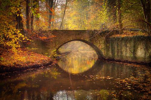 Brücke über die Wierau