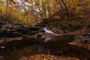 off the beaten path (dK.i photography) Tags: lowlight dusk autumn fall foliage creek waterfall longexposure vibrant colorful nature forest leaves patapscostatepark hike trailsawmilltrail natural hss sliderssunday