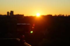 Untouched Soft Morning Sunrise (Gardner Smith Calibuso) Tags: sunrise dawn beautiful morning east bayview finch toronto ontario north york gardner calibuso natural untouched