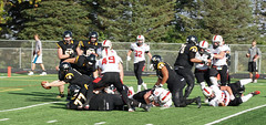 69 (dordtfootball2014) Tags: dordt northwestern