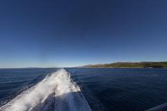 IMG_2988.jpg (Diluted) Tags: split croatia fisheye love romance honeymoon ferry kapetan luka krilo