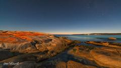The 'Bay of Fires' by moonlight (SteveWhitworthPhoto) Tags: australia tasmania eastcoast binalongbay bayoffires redrocks longexposure moonlight astrophotography stars nightsky nikon nikond800e nikon1424mmf28