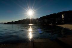 light dancing I (glasnevinz) Tags: newzealand wellington orientalbay freybergbeach beach sand sea sun