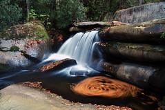 Leaf swirl at Waterfall. (Rusty4344) Tags: waterfalls waterfall leaves water fall nikon nikond90 outdoors outdoor rocks rivers roaring