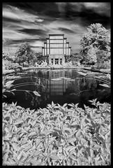 The Jewel Box in Infrared - No. 2 (Nikon66) Tags: jewelbox infrared forestpark stlouis missouri nikon d800