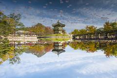 Hyangwonjeong Pavillon Reflections 香遠亭の移り絵 (Patrick Vierthaler) Tags: 香遠亭 향원정 hyangwonjeong hyangweonjeong pavillon gyeongbokgung 경복궁 京福宮 palace seoul south korea autumn fall momiji reflections pond