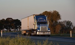 S&G (quarterdeck888) Tags: trucks transport semi class8 overtheroad lorry heavyhaulage cartage haulage bigrig jerilderietrucks jerilderietruckphotos nikon d7100 frosty flickr quarterdeck quarterdeckphotos roadtransport highwaytrucks australiantransport australiantrucks aussietrucks heavyvehicle express expressfreight logistics freightmanagement outbacktrucks truckies bdouble van mack trident sg sgtransport