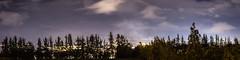 Juegos de luz entre las sombras (carlosgonzalezh.colombia) Tags: colombia nario pasto sanjuandepasto arbol arboles azul blue bosque cielo clouds light luces nubes paisaje panoramica silueta sky tree violet violeta