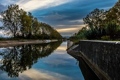 The dawn... (Alfredo Mateus Photography) Tags: gua water mondego coimbra portugal trees rvores amanhecer dawn canal rega canals