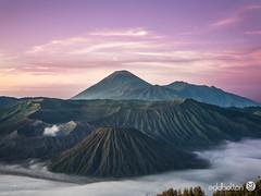 Mt Bromo (eddbolton) Tags: java mountains mtbromo worldtrip active clouds indonesia sunrise traveling volcano