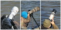 Conowingo Dam ~ serious shooting - HCS! (karma (Karen)) Tags: conowingodam maryland harfordco photographers cameras collages picmonkey cliches hcs mmm