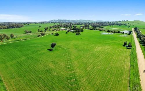 Springfield - 46 Carro Park Road, Cowra NSW 2794