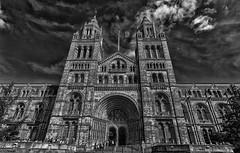 Museo de Historia Natural (D. Lorente) Tags: dlorente nikon nubes bw bn buildings london museo contrapicado perspective paseando