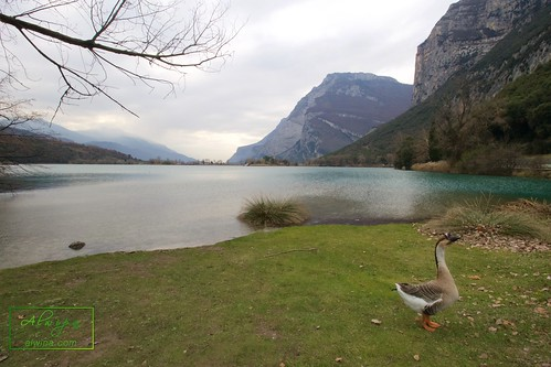 "Trentino Alto Adige - Italy • <a style=""font-size:0.8em;"" href=""http://www.flickr.com/photos/104879414@N07/31098396330/"" target=""_blank"">View on Flickr</a>"
