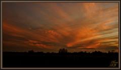 Brush strokes (WanaM3) Tags: wanam3 sony a700 sonya700 texas houston elfrancoleepark park dusk clouds landscape cloudscape redsky sunset
