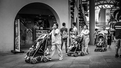 The Moony, the Cocky and the Fierce (leo2109) Tags: people nurses ben bn blackwhite outdoor alabang muntinlupa philippines kids street photography monochrome lights city cityscape