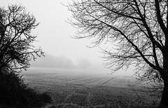 Depression (mripp) Tags: black white mono monochrom depression psyche psychologisch bad feeling art kunst landscape landschaft nature bavaria bayern germany deutschland
