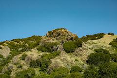 Just another Big Sur hillside, April, 2005 (adamkmyers) Tags: pch landscape bigsurl
