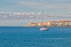 _DSC7817_LUM (AndreaFranco1968) Tags: pirano piran sail boat harbour sea outdoor architecture coast