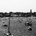 Nantucket's Harbor