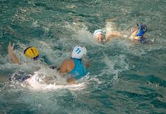2C040754 (roel.ubels) Tags: len euro league waterpolo sport topsport utrecht uzsc 2016 krommerijn women