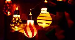 A warm greeting for the season (TaglessKaiju) Tags: christmas light bulb seasons greetings holiday xmas candy cane string