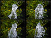 Fountain (Argentem) Tags: fountain shapeshifting 4x4 water